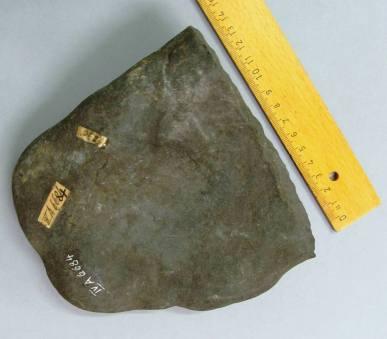 Lamp Fragment - IV.A. 6684 - A