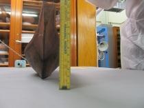 Model Canoe - IV. A. 6255